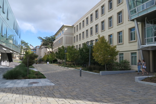 USF Cowell Hall