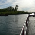 Tommy Thompson Park