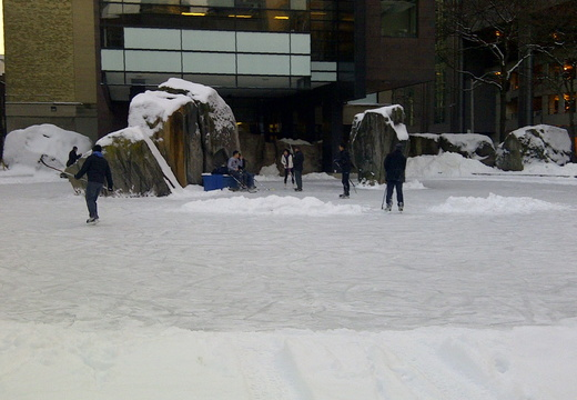 Ryerson Rink, Boxing Day 2013