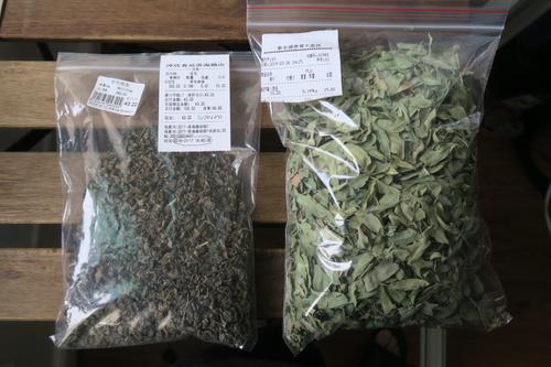 Luobuma 罗布麻 leaves