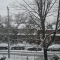 Riverside neighbourhood -- Snow outside our bedroom window onto the street for the first day of December strikes fear into morning commuters.  South of Queen Street East, just east of the Don River, we have a microclimate, so precipitation melted to wetness by later in day.  Three weeks to winter solstice, and then we hope for brighter days.  (Riverside neighbourhood, Toronto, Ontario) 20201201